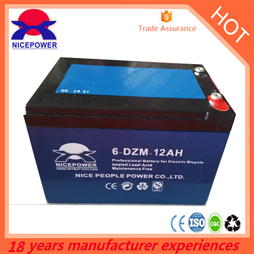 12v12ah E Bike Battery