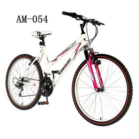 26 Inch Women S Mountain Bike