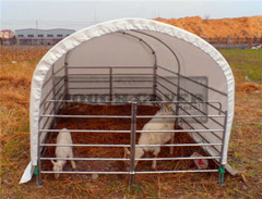 3m Wide Goat Tent Livestock