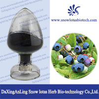 5 70 Blueberry Extract 65288 Anthocyanin 65289