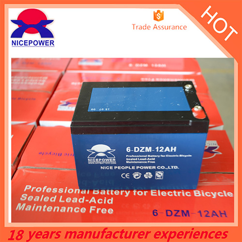 6 Dzm 12ah E Bike Battery