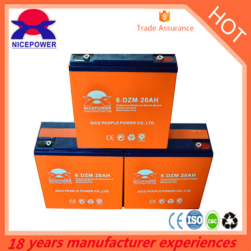 6 Dzm 20ah E Bike Battery