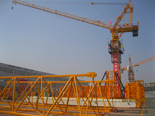 6 Ton Luffing Tower Crane