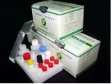 Aflatoxins B1 Elisa Test Kit