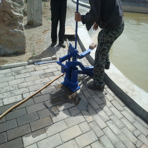 Afric Pedal Water Pump