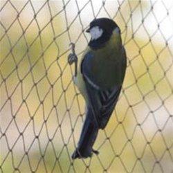 Anti Bird Mesh Machine
