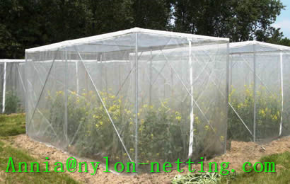 Anti Insect Net Separates Effectively Pest
