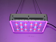 Apollo4 Led Grow Light
