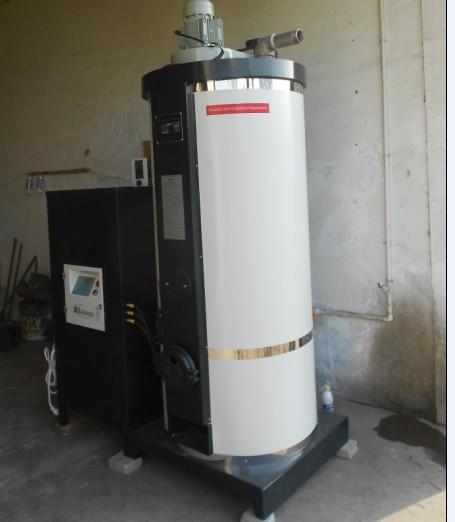 Atmospheric Biomass Hot Water Burner