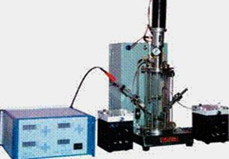 Auto Controlled Borosilicate Glass Plant Cell Bioreactor 9 12