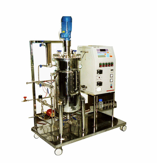 Automatic Mechanical Stirring Borosilicate Glass Bioreactor 4 22