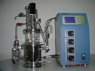 Automatic Mechanical Stirring Borosilicate Glass Bioreactor Stainless Steel