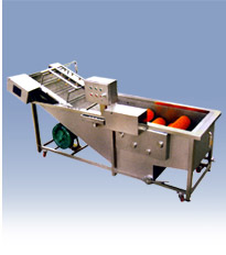 Automatic Semi Fruit Vegetable Processing And Packaging Equipment Bottling Canning