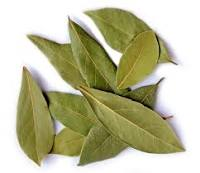 Bay Leaf Refers To The Aromatic Leaves Of Several Plants Used In Cooking