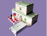 Benzyl Penicillin Elisa Test Kit