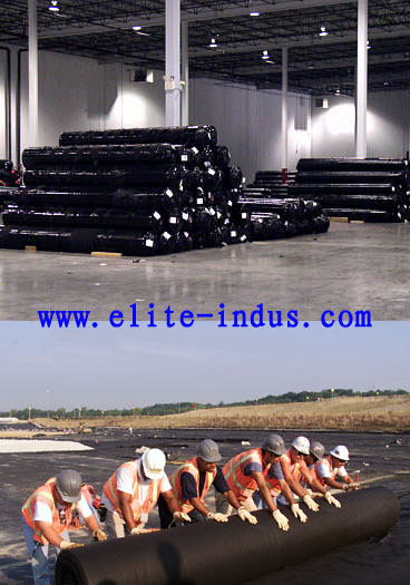 Best Price Pp Woven Geotextile