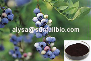 Bilberry Extract 25 Anthocyanidins