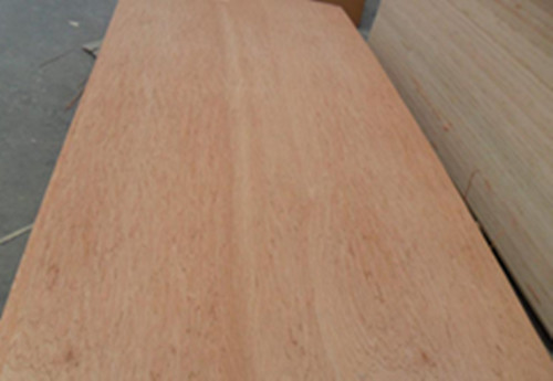 Bintangor Plywood Veneer Commercial Faced 1220x2440mm