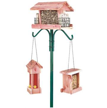 Bird Feeder Pole Plus Kit With Hangers