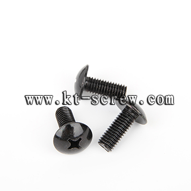 Black Oxide Truss Philip Head Laptop Screw With Iso Card