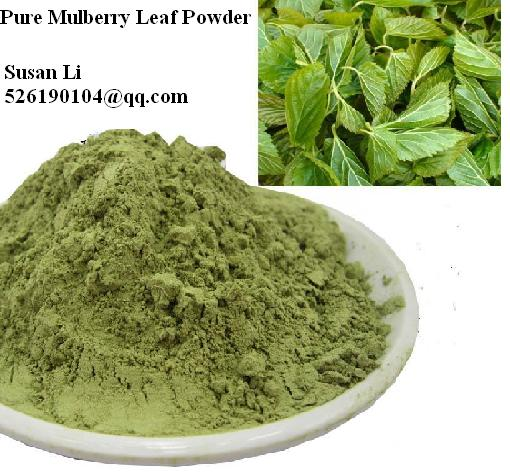 Bulk Sale 100 Pure Mulberry Leaf Powder Low Blood Pressure Diabetes Friendly Loose Weight