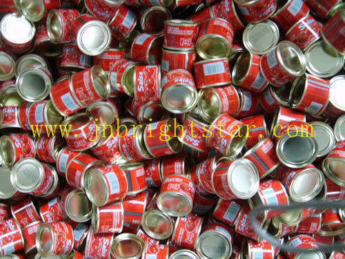 Canned Tomato Ketchup In 400g