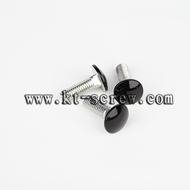 Carriage Bolt Laptop Screw With Iso Card