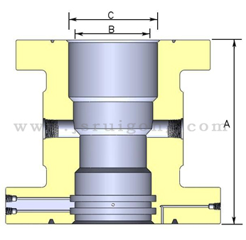 Casing Head Assembly