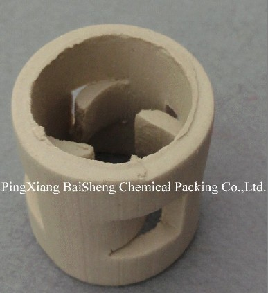 Ceramic Pall Ring Chemical Packing For Actifier Columns