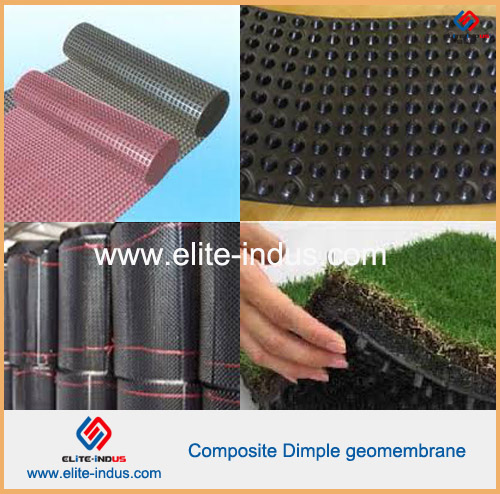 Cheap Price Drainage Board Hdpe Composite Dimple Geomembrane