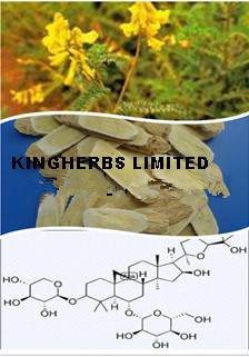 China Astragalus Extract