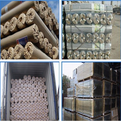 China Good Supplier Stainless Steel Wire Mesh Wove Netting Anti Rust Factory Lists