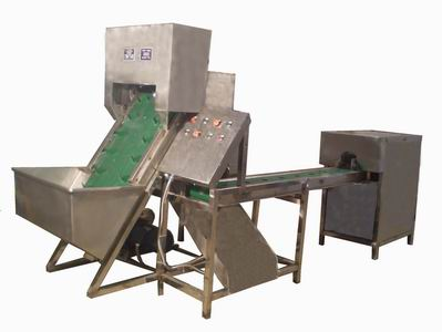 China Patent Onion Processing Machine