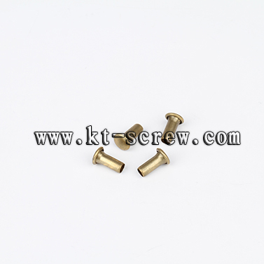 China Screw Manufacturer Of Hollow Rivet