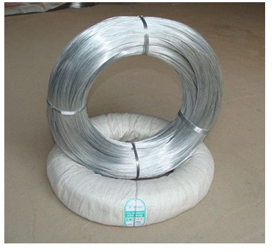 China Supplier Galvanized Wire