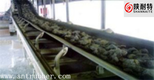 China Supply Heat Resisting Conveyor Belt