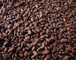 Cocoa Powder Butter Liqour Beanscocoa For Sale
