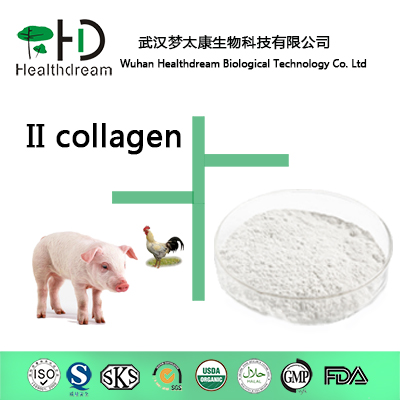 Collagen Type Ii Edible Level
