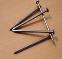Common Iron Nail From China