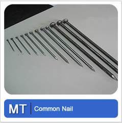 Common Nail Metal Tec