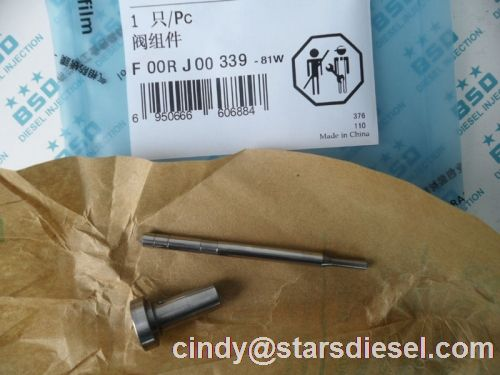 Common Rail Injector Valve F00rj00339 Made In China