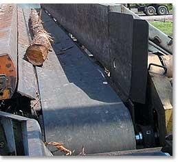 Conveyor System Belts The Log King Forestry