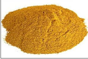 Corn Gluten Meal Supplier