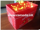 Corrugated Pp Fruit Packaging Box