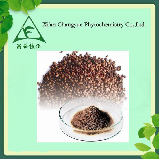 Cosmetic Products From Grape Seed Extract Capsule Vitis Vinifera L Opc