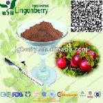 Cranberry Extract Fruit Powder