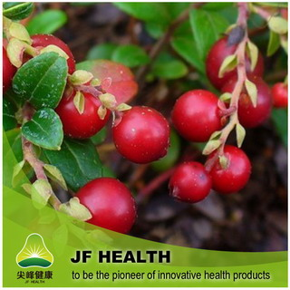Cranberry Extract Opc95