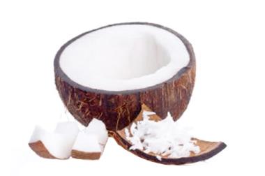 Dasiccated Coconut Vietnam S Origin