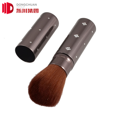 Dc Makeup Retractable Brushes