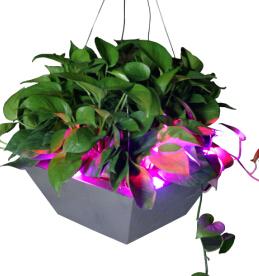 Decorative Led Flowerpot For Home Garden Hot Sale